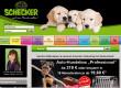 Schecker Onlineshop - Gutscheine